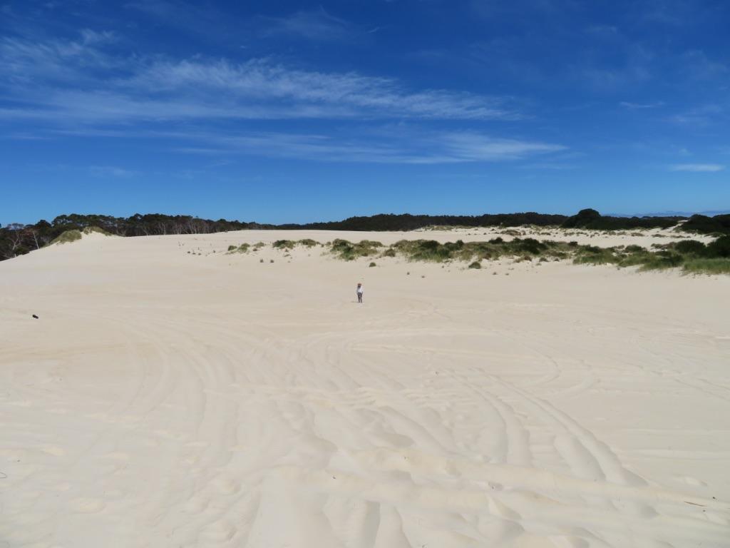 ヘンティデューンズの大砂漠