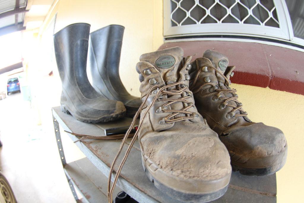 ファームの靴