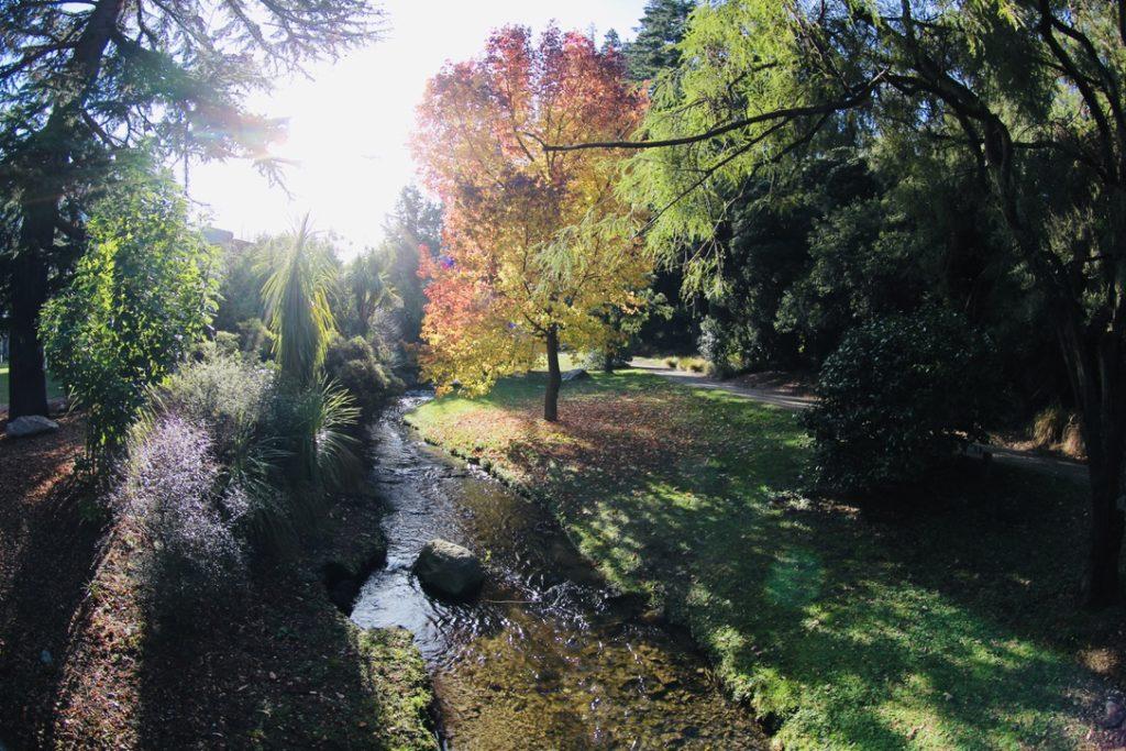 クイーンズタウンの公園