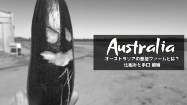 【悪徳ファームの仕組みと手口】オーストラリア在住のファーマーが教えます