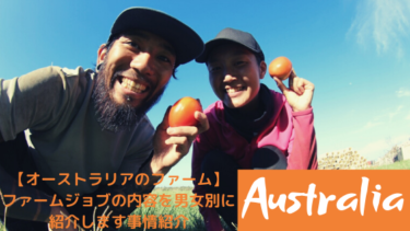 【オーストラリア】ファーム ジョブの仕事内容を男女別に解説!