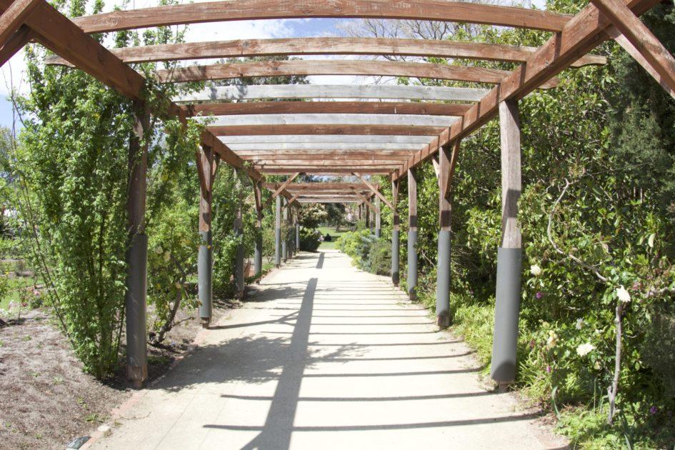 セント・キルダの植物園