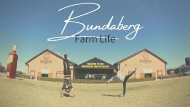 オーストラリアのファーム生活は最高の街 バンダバーグで決まり!
