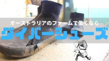 ファームで稼ぎたい?ならダイバー シューズは日本で買っていけ!