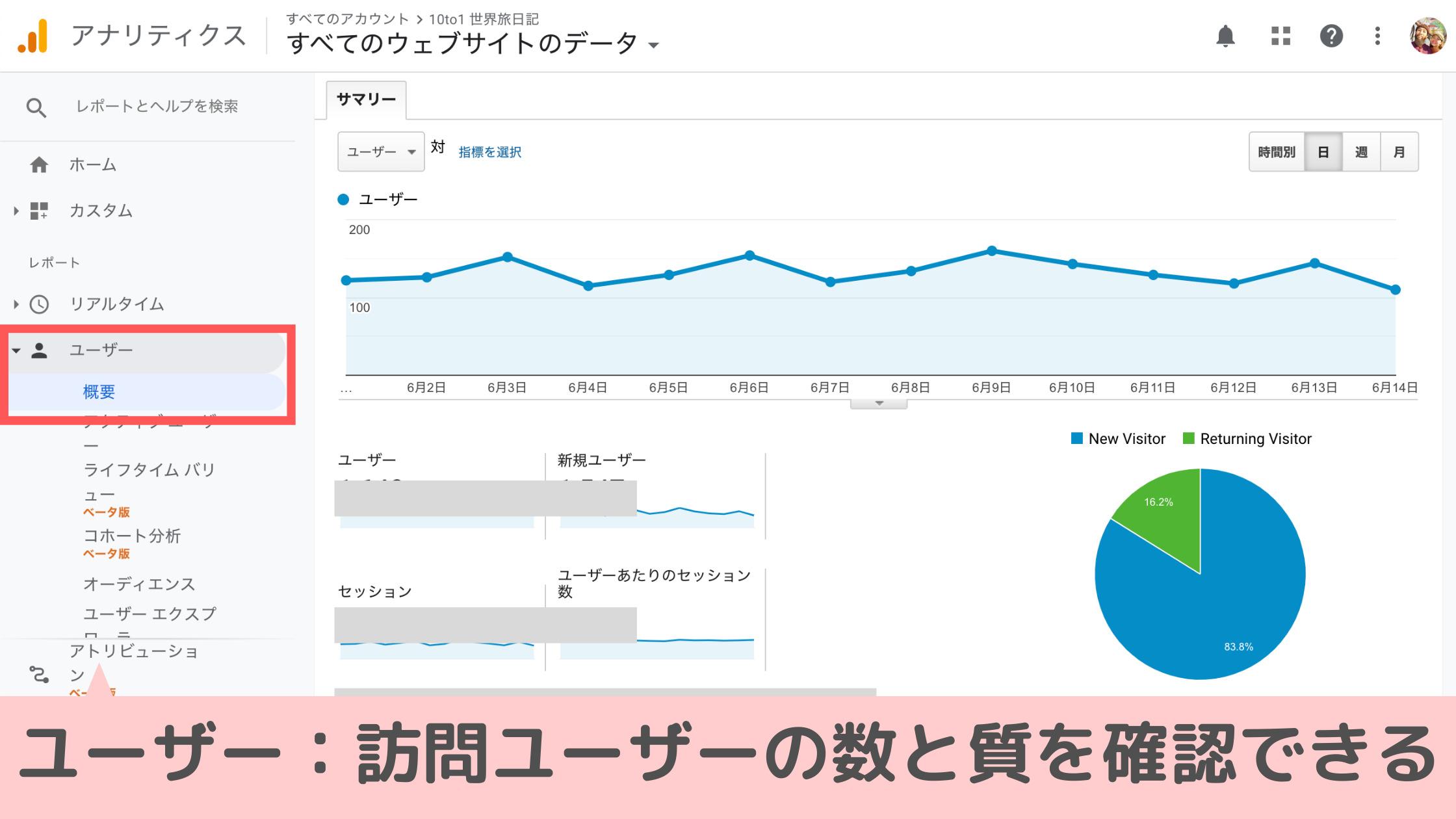 ユーザー:訪問ユーザーの数と質を確認できる